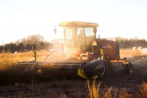 rekompensata finansowa dla rolników
